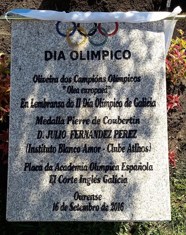 Emotiva Celebración En Ourense Del Día Del Olimpismo Gallego